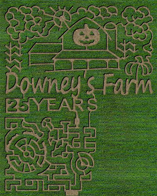 corn maze Brampton